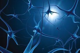 其他地区神经系统疾病转诊