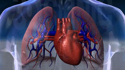 出国看病之肺癌治疗案例
