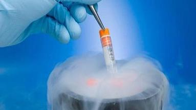 泰国试管婴儿移植冻胚的费用
