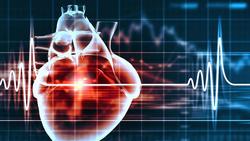 年轻人心脏性猝死与基因有关
