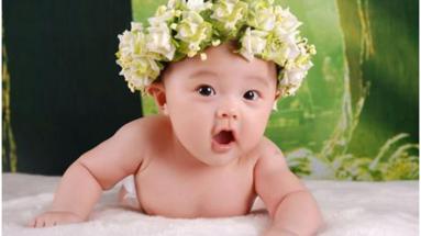 泰国试管婴儿技术中的取卵过程