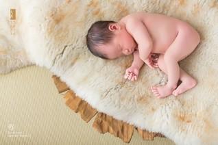 春雨國際:海外試管嬰兒喜得龍鳳胎、雙胞胎全記錄