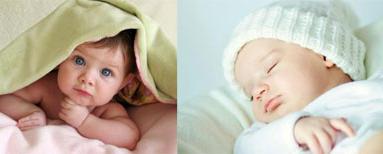 试管婴儿大讨论:取卵越多越好,成功率越高吗?