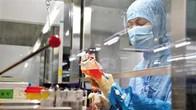 用转基因脐带血治疗脊髓外伤