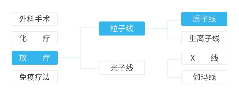 詳情介紹-德國質子重離子治療.jpg