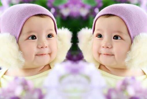 香港试管婴儿