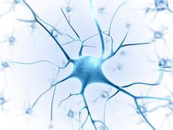 歐美神經系統疾病轉診