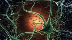 新技术可促进局部缺血组织血管生长
